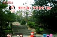 阳春三月适合去宝安公园踏青!