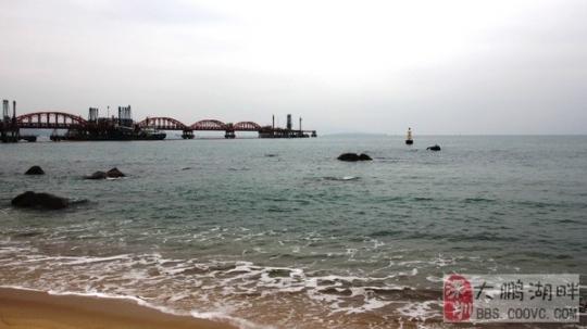 深圳玫瑰海岸最新门票价格