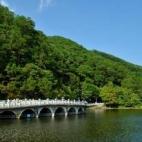 仙湖植物园好玩吗,有山有水好地方 【评论汇总六】