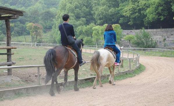 深圳骑马场